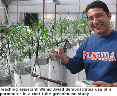 Wahid in the greenhouse